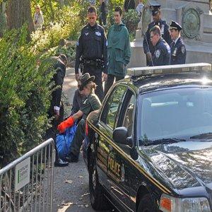 セントラルパークで発見された小熊の死体、車にはねられて死亡か